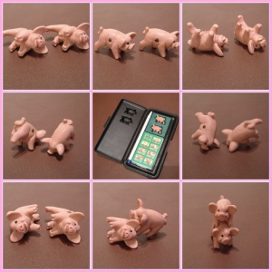 pig-dice